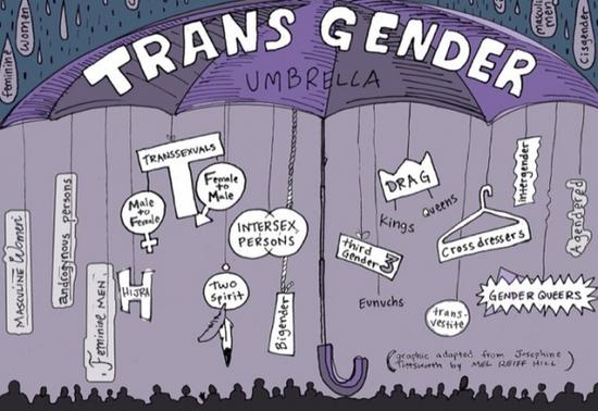 parapluie des genres